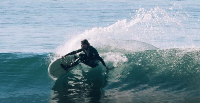 twin fin fish surfboard