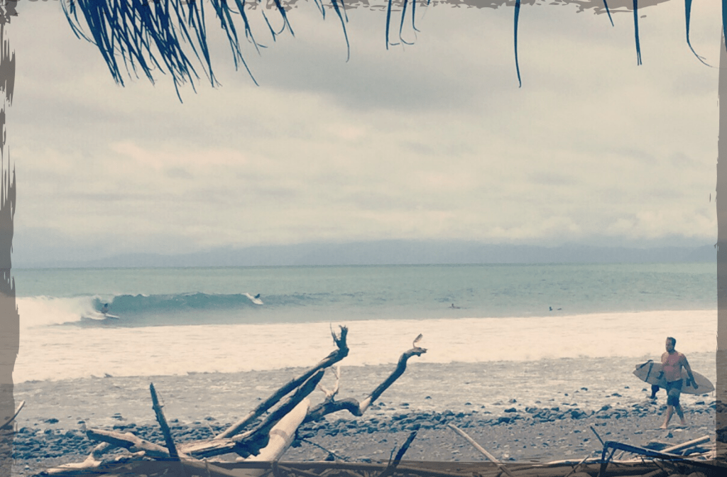 Twin Fin Coffee Surfing Pavones Costa Rica