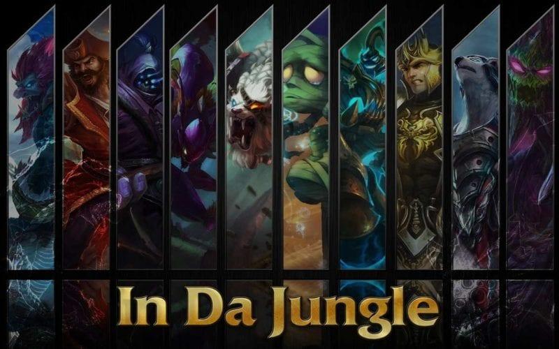Guide to jax jungle