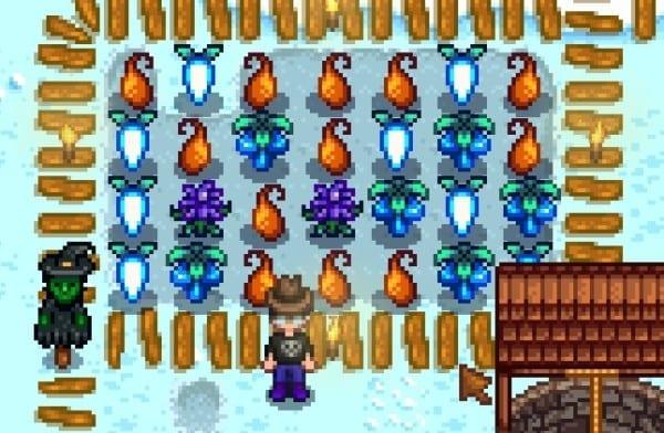 Winter_Produce