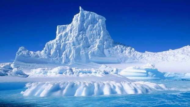 Antarctica - Articuno