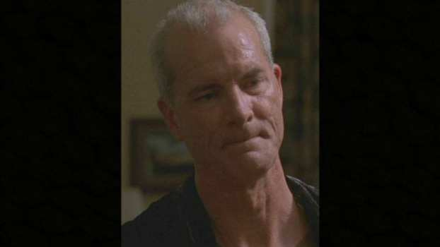 Michael Shamus Wiles as Police Captain Russel