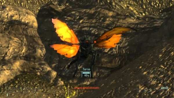 Cazadors - Fallout: New Vegas