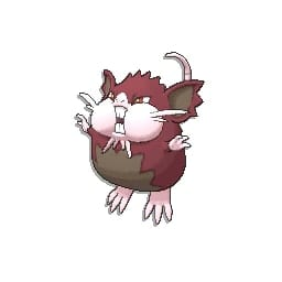 pokemon sun and moon raticate