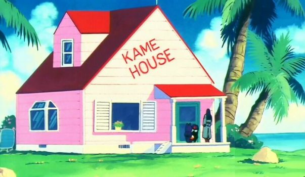 Vegeta Has Never Been to the Kame House