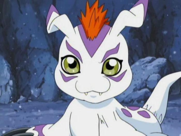 Gomamon All Original Digimon Ranked