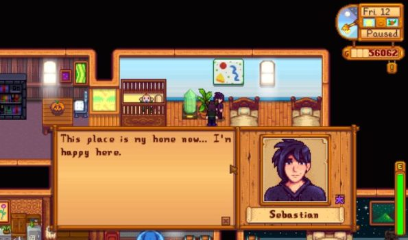 Sebastian (Stardew Valley)