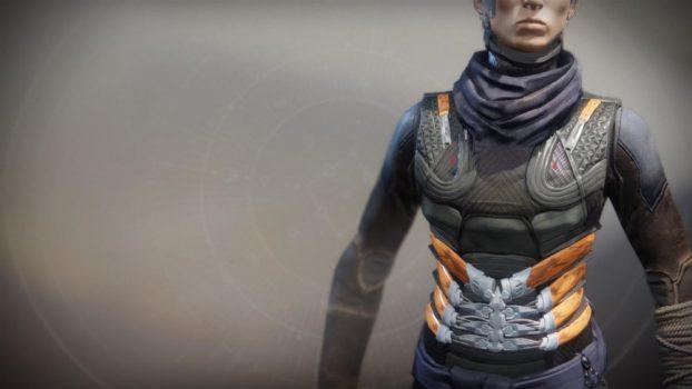 Raiden Flux (Hunter Chest Armor)