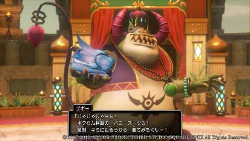 Dragon Quest XI S (17)