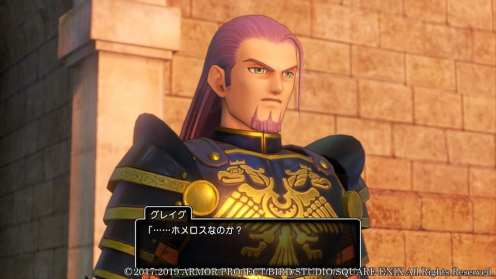 Dragon Quest XI S (20)