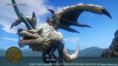 Dragon Quest XI S (5)