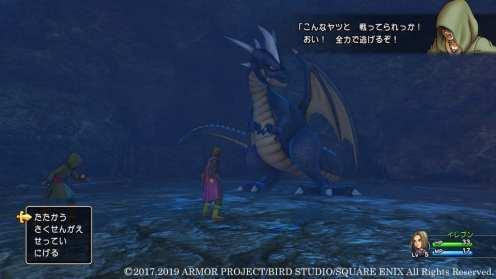 Dragon Quest XI S (7)