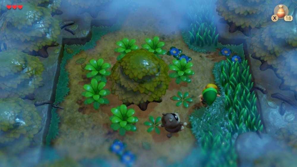 Zelda link's awakening raccoon