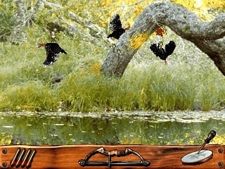 Turkey Hunting USA