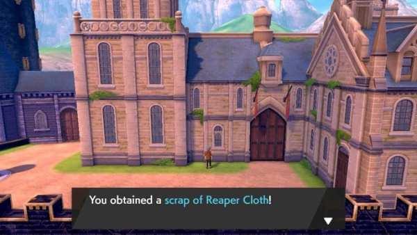 pokemon sword and shield, reaper cloth