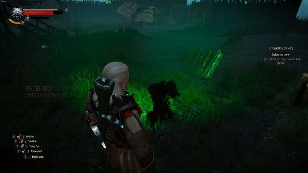 Witcher 3 Towerful of Mice