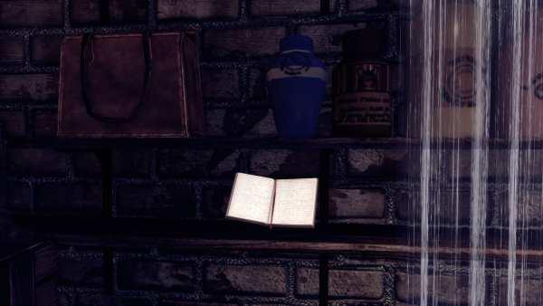 BioShock Infinite Vox Code Book 3