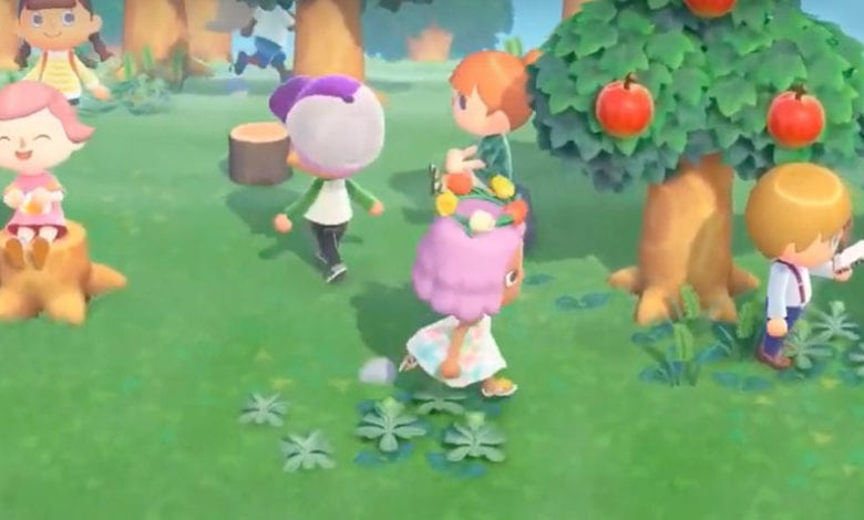 multiplayer activities to do in animal crossing new horizons