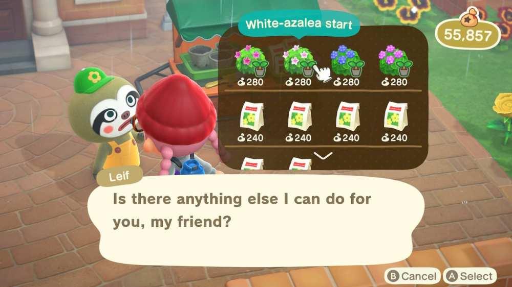 Pansies in Animal Crossing New Horizons