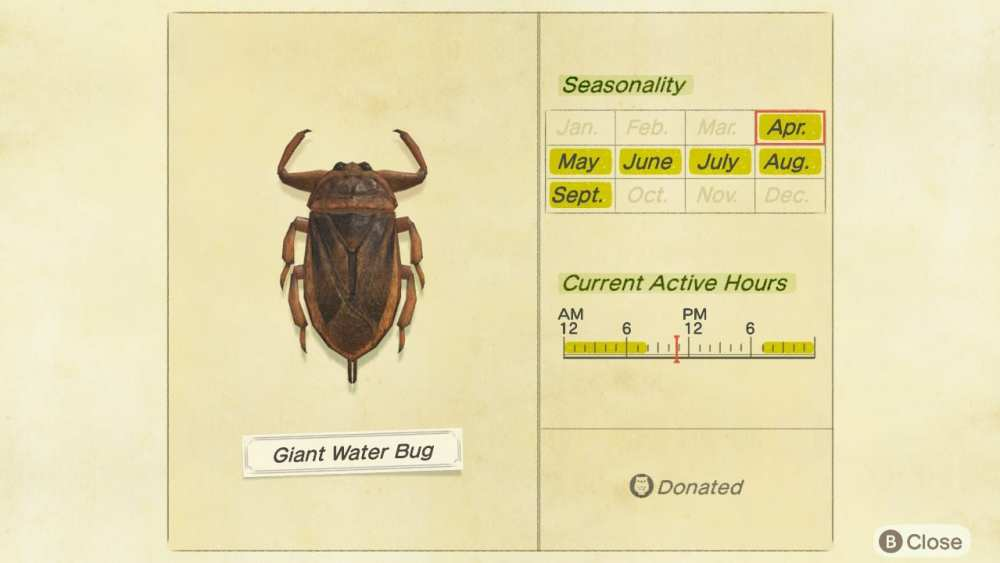 Giant water bug in animal crossing new horizons