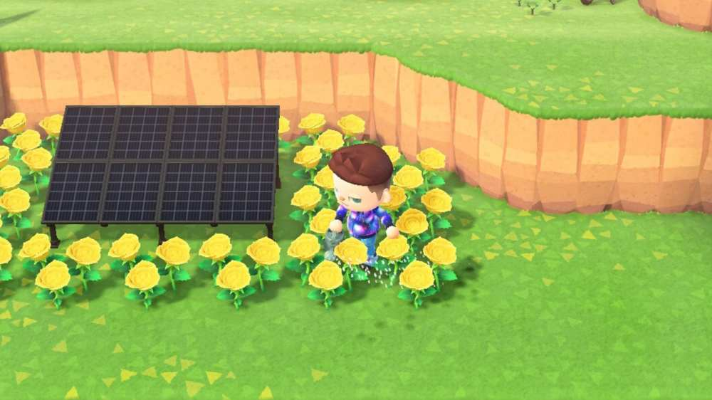 Animal Crossing New Horizons Gold Rose