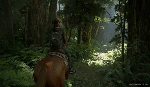 The Last of Us Part II (7)