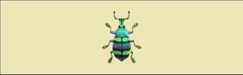 blue weevil beetle in animal crossing new horizons