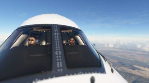 Microsoft Flight Simulator (13)