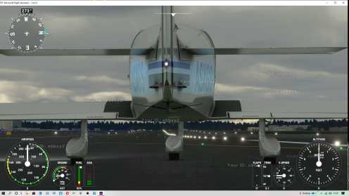 Microsoft Flight Simulator (6)