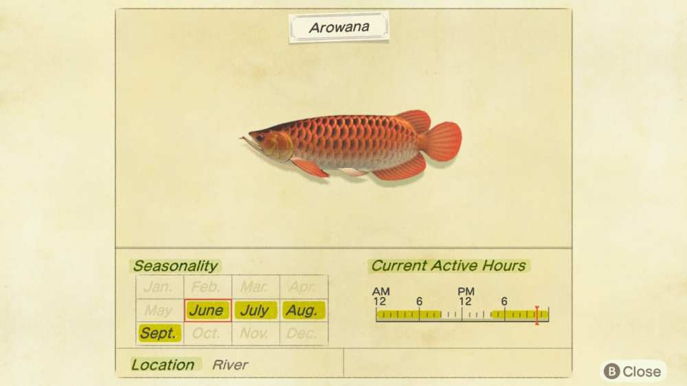 animal crossing new horizons arowana