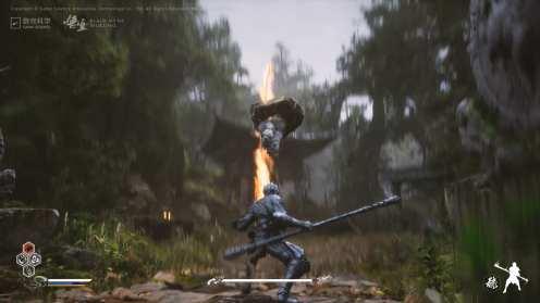 Black Myth Wukong (11)