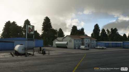 Microsoft Flight Simulator (40)