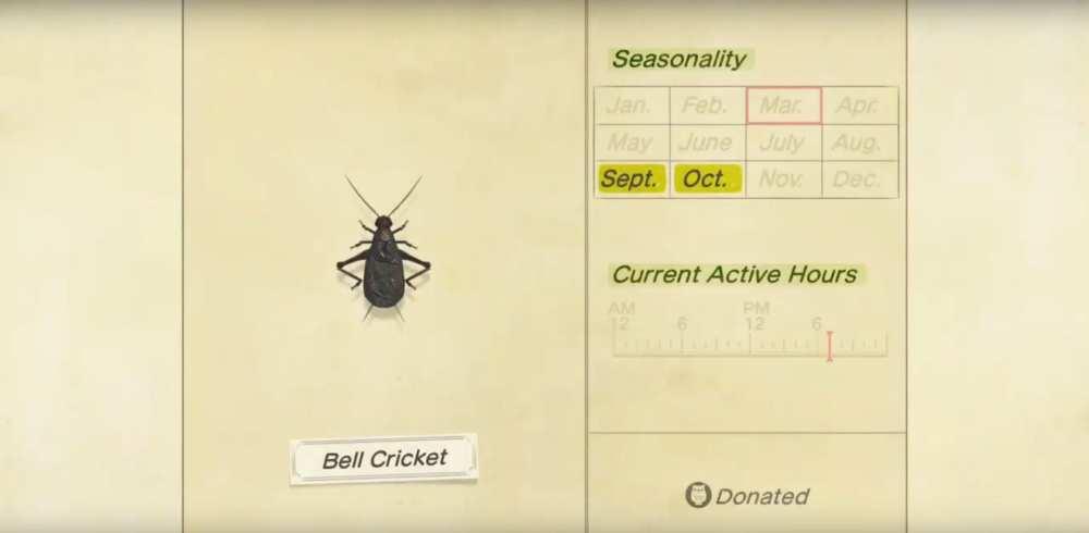 animal crossing new horizons, bell cricket