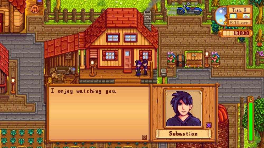 I in valley stardew who should quiz marry Who should