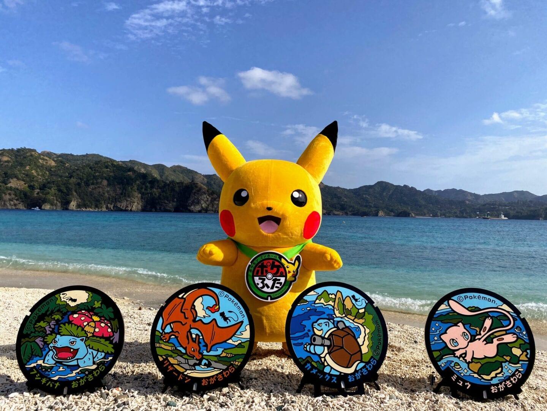 Pokemon Poke-Lid