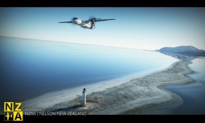 Microsoft Flight Simulator Nelson