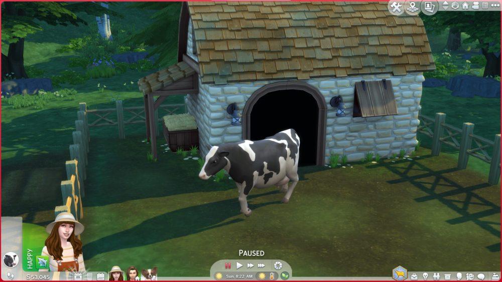 Sims 4 Buy Cows
