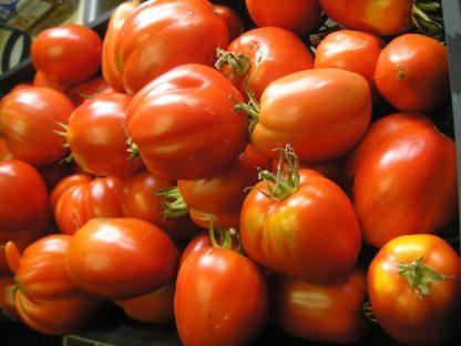 """Tomato """"Polish Giant Paste"""""""