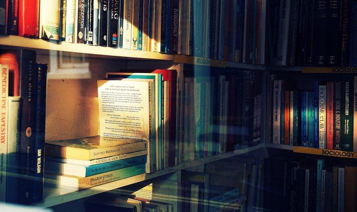 bookcase-books-bookshelf-1098601.jpg