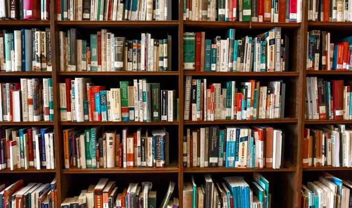 secondary resources: a shelf full of books