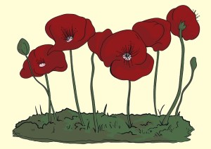 Revise Poppies by Jane Weir: Power and Conflict Poems