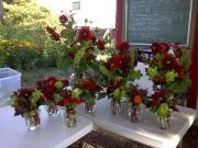 KB flowers 10