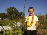 Otto on the farm
