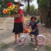 bike adornments