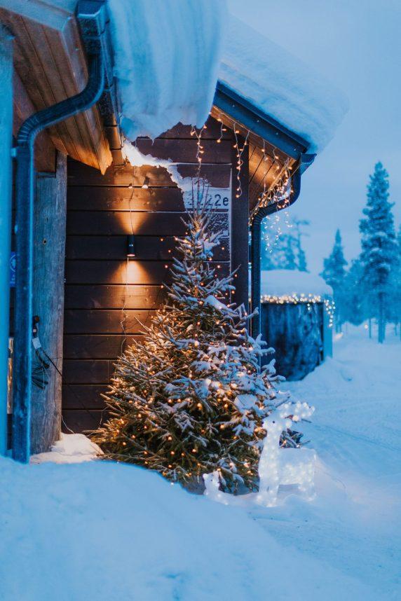 Inghams Lapland