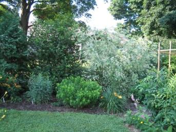12508030@N06_7203415840_2005.5 client garden (28)