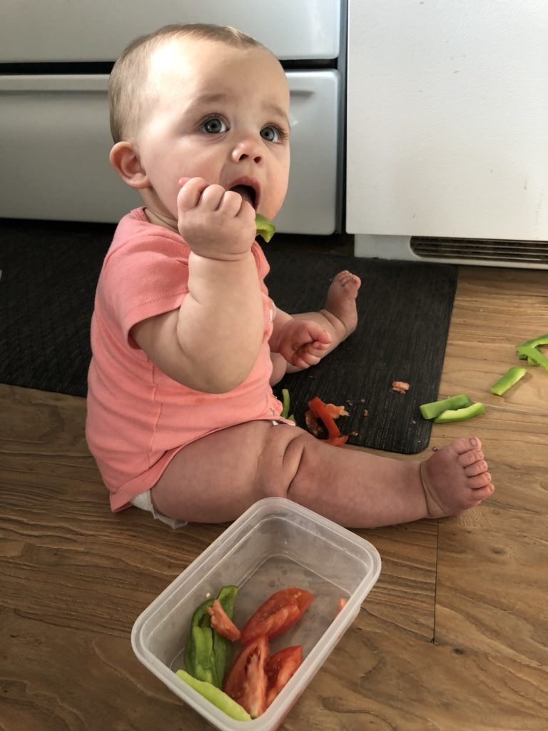 30 baby led weaning dinners for the whole family