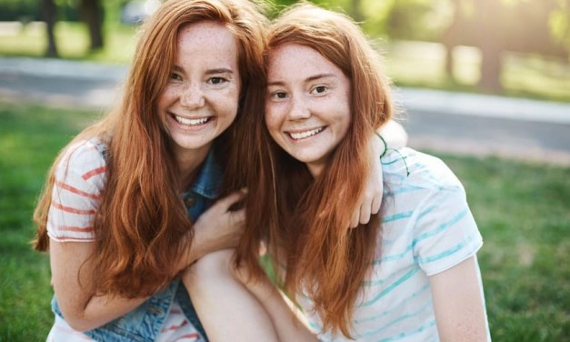 The Twin's Guide To Surviving High School