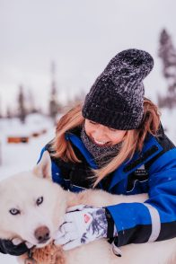 huskies star arctic hotel