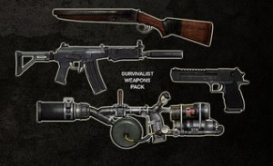 Last of Us grounded weapons